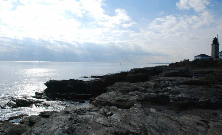 Hull Cove to Beavertail Light Walk-  Jamestown, RI  [click on picture caption to view article!]