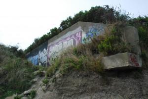 DSC_0046grafitti wall