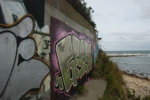 DSC_0243grafiti up close