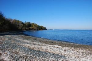 starting beach